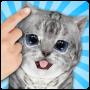 icon Talking Cat Funny Kitten Sound