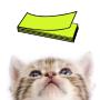 icon CAT MEMO